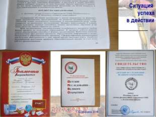 Ситуация успеха в действии Г.В.Нечукина 2014 Г.В.Нечукина 2014