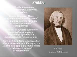 УЧЕБА. С 1813 года домашним образованием Ф.И.Тютчева руководил Семён Егорович