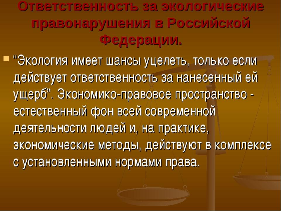 """Ответственность за экологические правонарушения в Российской Федерации. """"Экол..."""