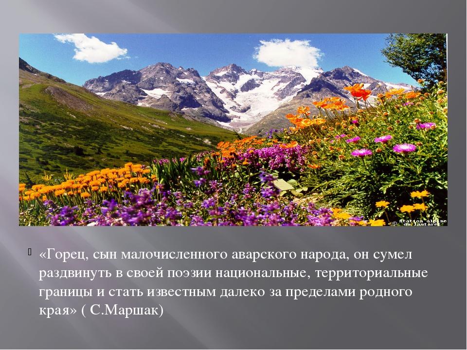 «Горец, сын малочисленного аварского народа, он сумел раздвинуть в своей поэ...