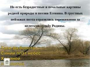 Но есть безрадостные и печальные картины родной природы в поэзии Есенина. В г