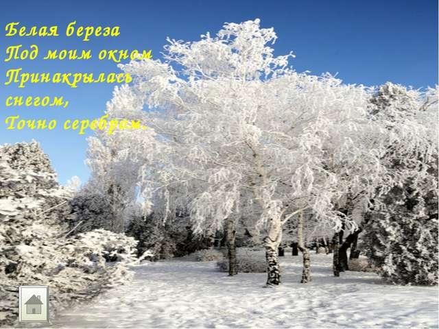 Белая береза Под моим окном Принакрылась снегом, Точно серебром.