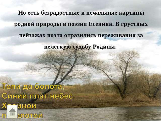 Но есть безрадостные и печальные картины родной природы в поэзии Есенина. В г...