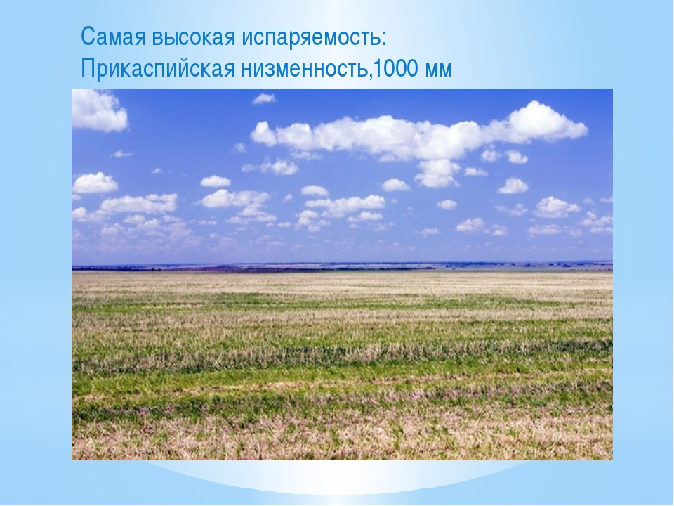 Самая высокая испаряемость: Прикаспийская низменность,1000 мм