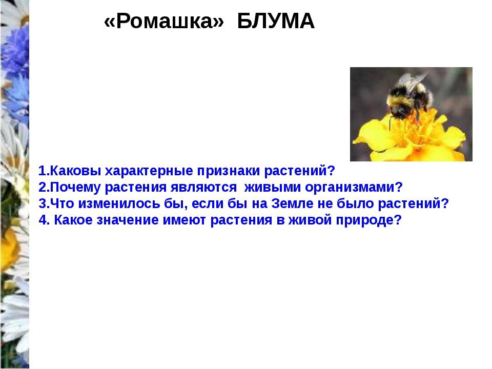 «Ромашка» БЛУМА 1.Каковы характерные признаки растений? 2.Почему растения яв...