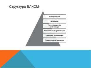 Структура ВЛКСМ