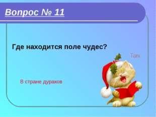 Вопрос № 11 Где находится поле чудес? В стране дураков