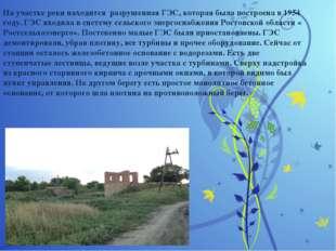 На участке реки находится разрушенная ГЭС, которая была построена в 1954 год