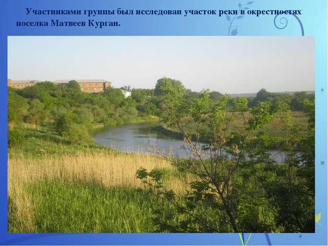 Участниками группы был исследован участок реки в окрестностях поселка Матвее...