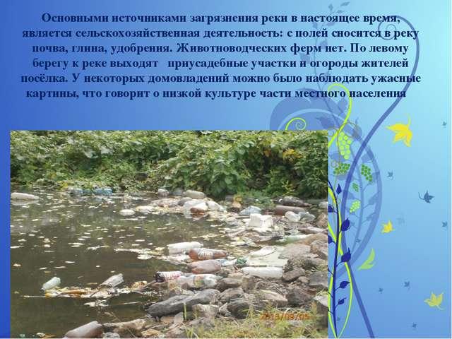 Основными источниками загрязнения реки в настоящее время, является сельскохо...
