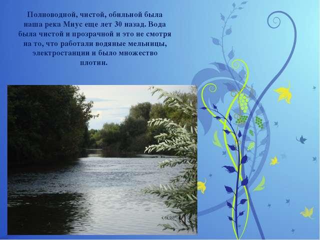 Полноводной, чистой,обильной была наша река Миусеще лет 30 назад. Вода была...