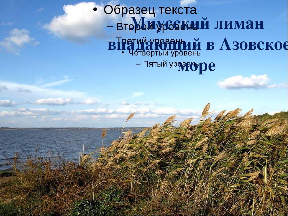 Миусский лиман впадающий в Азовское море