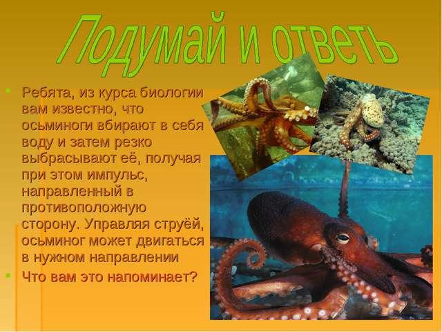 Ребята, из курса биологии вам известно, что осьминоги вбирают в себя воду и з...