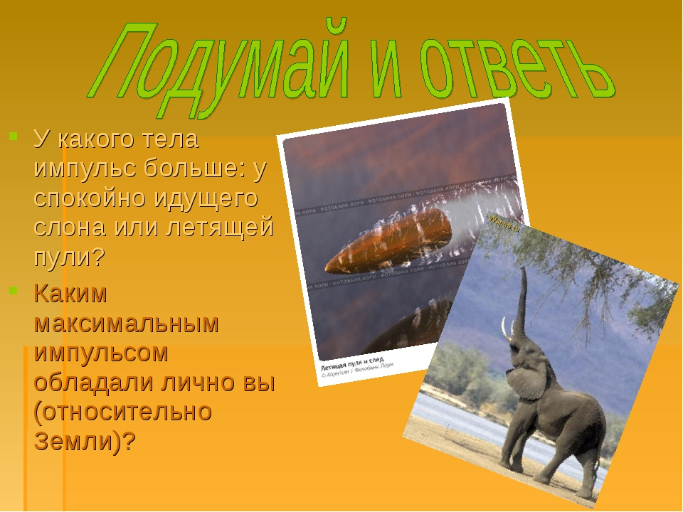 У какого тела импульс больше: у спокойно идущего слона или летящей пули? Каки...