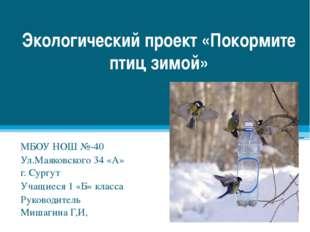 Экологический проект «Покормите птиц зимой» МБОУ НОШ №-40 Ул.Маяковского 34 «
