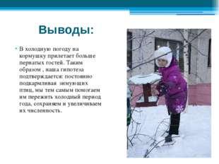 Выводы: В холодную погоду на кормушку прилетает больше пернатых гостей. Таким