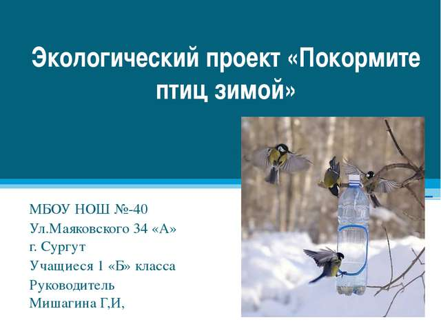 Экологический проект «Покормите птиц зимой» МБОУ НОШ №-40 Ул.Маяковского 34 «...