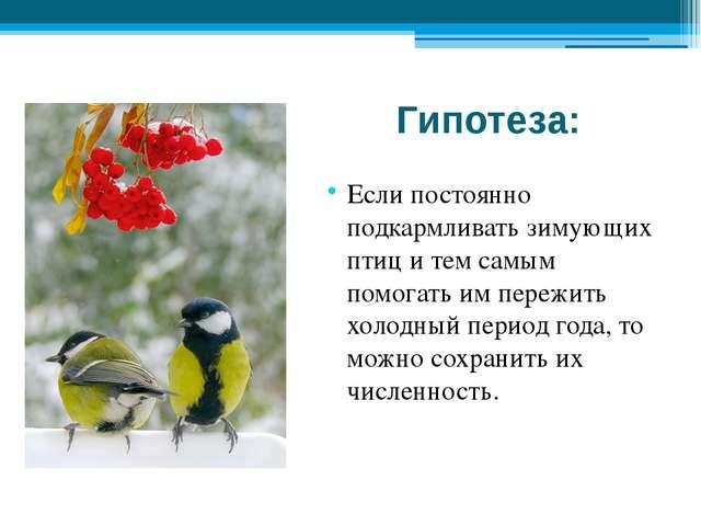 Гипотеза: Если постоянно подкармливать зимующих птиц и тем самым помогать им...