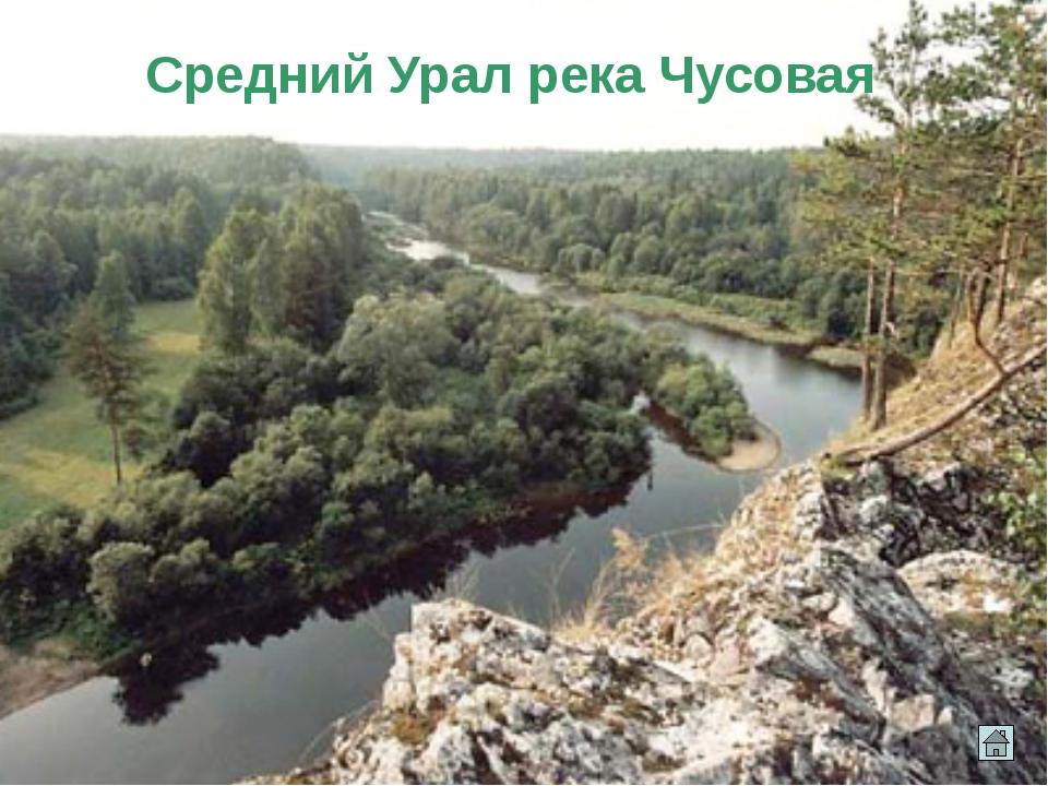Гора малых болванов Палкинские каменные палатки. Чёртово городище Как могли о...