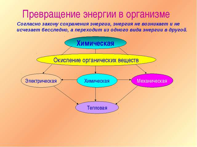 Согласно закону сохранения энергии, энергия не возникает и не исчезает бессл...