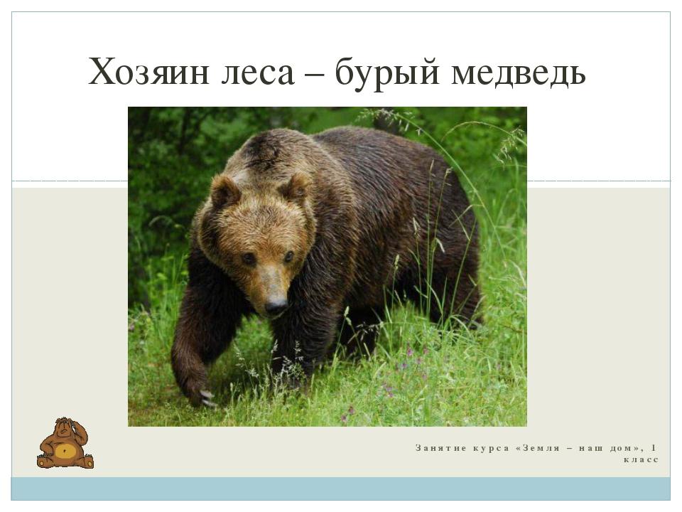 Занятие курса «Земля – наш дом», 1 класс Хозяин леса – бурый медведь