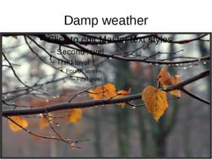 Damp weather