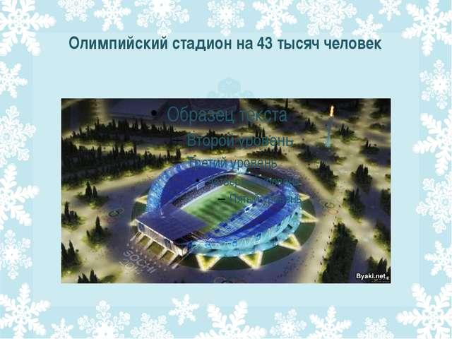 Олимпийский стадион на 43 тысяч человек