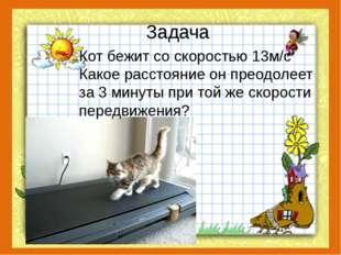 Задача Кот бежит со скоростью 13м/с Какое расстояние он преодолеет за 3 минут