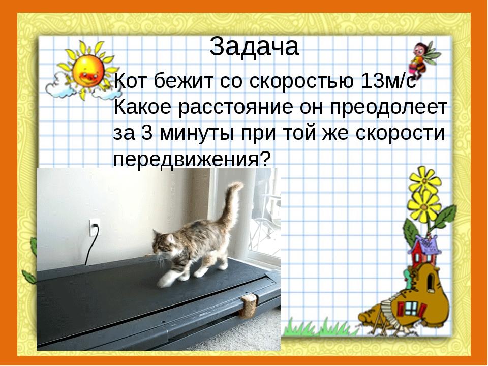 Задача Кот бежит со скоростью 13м/с Какое расстояние он преодолеет за 3 минут...