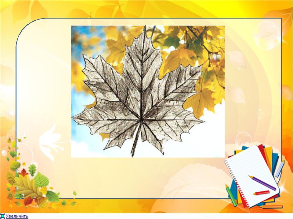 1. Сделаем первоначальную разметку прожилок листьев