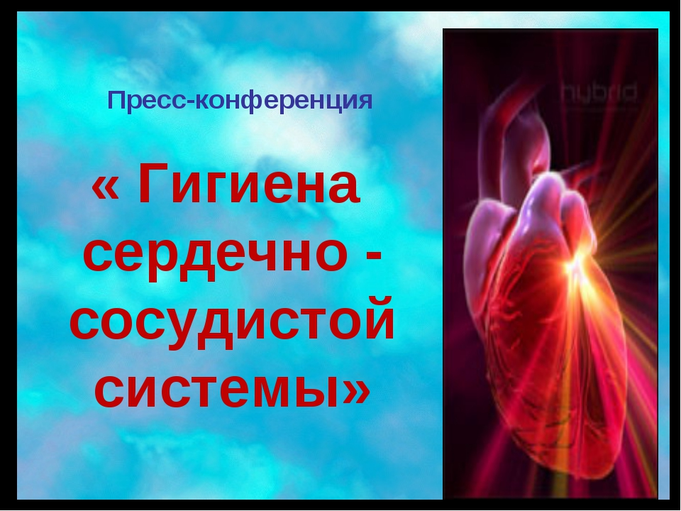 Пресс-конференция « Гигиена сердечно - сосудистой системы»