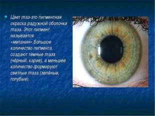 Цвет глаз-это пигментная окраска радужной оболочки глаза. Этот пигмент называ