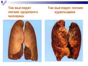 Так выглядят легкие здорового человека Так выглядят легкие курильщика