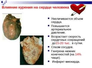 Увеличивается объем сердца. Повышается артериальное давление. Возрастает ско