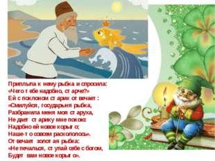 Приплыла к нему рыбка и спросила: «Чего тебе надобно, старче?» Ей с поклоном