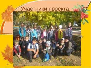 Участники проекта. Olga73