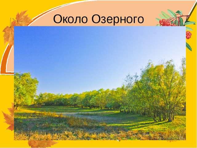 Около Озерного Olga73
