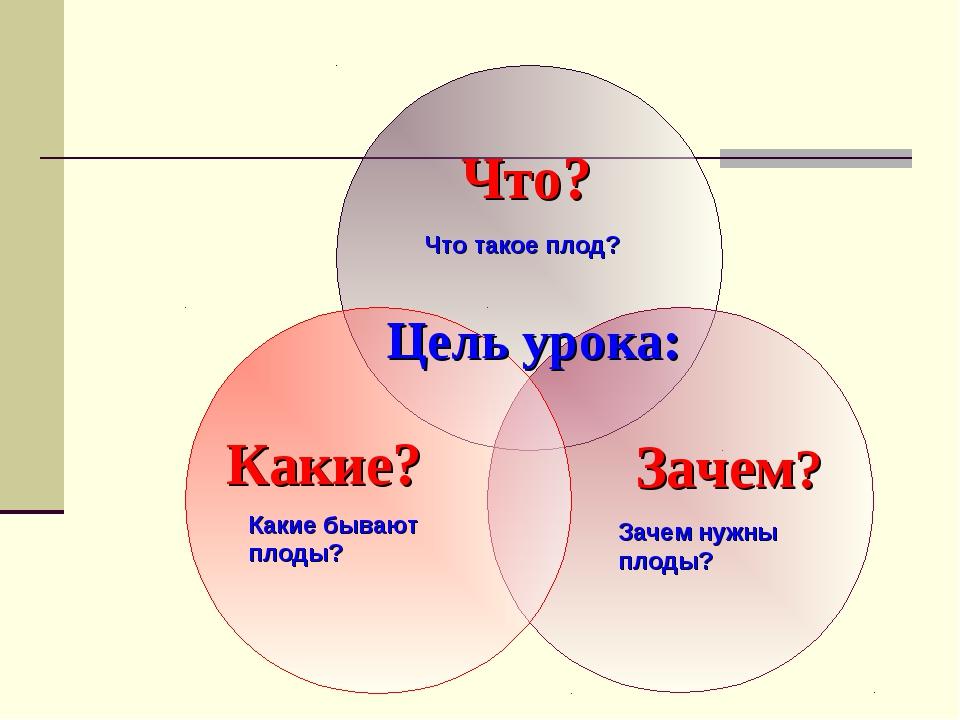 Что такое плод? Какие бывают плоды? Зачем нужны плоды?