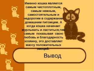 Вывод Именно кошка является самым чистоплотным, самым нежным, самостоятельным