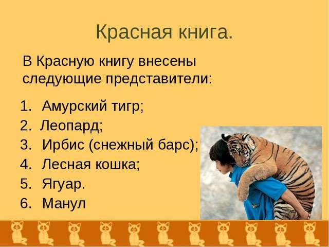 Красная книга. Амурский тигр; 2. Леопард; Ирбис (снежный барс); Лесная кошка;...