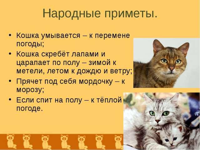 Народные приметы. Кошка умывается – к перемене погоды; Кошка скребёт лапами и...