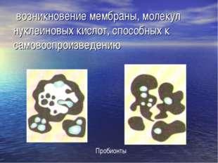 возникновение мембраны, молекул нуклеиновых кислот, способных к самовоспроиз