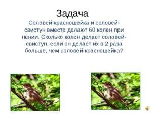 Задача Соловей-красношейка и соловей-свистун вместе делают 60 колен при пении