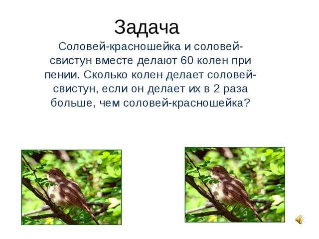 Задача Соловей-красношейка и соловей-свистун вместе делают 60 колен при пении...