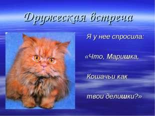 Дружеская встреча Я у нее спросила: «Что, Маришка, Кошачьи как твои делишки?»