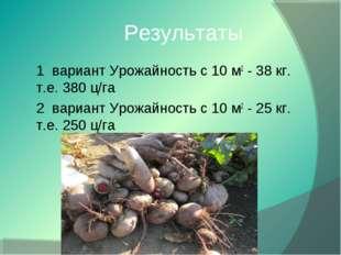 Результаты 1 вариант Урожайность с 10 м2 - 38 кг. т.е. 380 ц/га 2 вариант