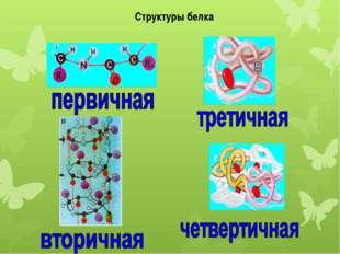 Структуры белка
