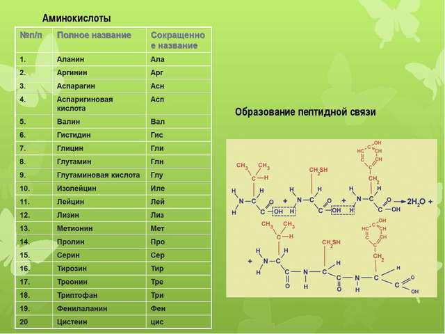 Аминокислоты Образование пептидной связи