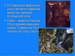 В Славянской мифологии сокол является символом мужества, мужской богатырской