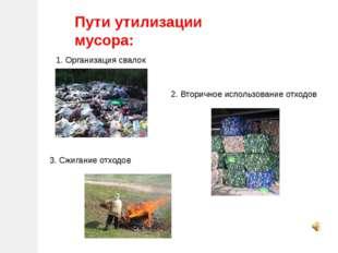 Пути утилизации мусора: 1. Организация свалок 2. Вторичное использование отхо
